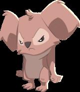 Mad koala