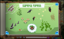 Journey Book of Sarepia Forest-0