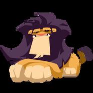 Lion sit