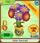 Treetop-Gardens Aster-Bouquet Blue