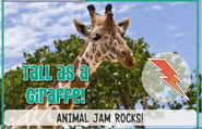 Giraffejag