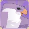 Falconheader.png