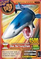 File:Blue the Young Shark.jpg