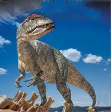 Allosaurus   Animal of the world Wiki   Fandom powered by ...