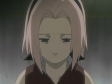 Sakura with short hair