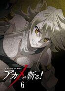 Akame ga Kill BD06