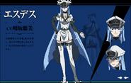 Esdeath Anime Concept 02