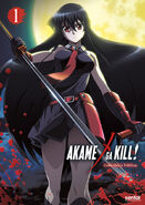 Akame ga Kill DVD and BD Collector's Edition 1 (Sentai Filmworks)