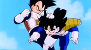 Vegeta grabed gohan by the hair and knees him in the stomach