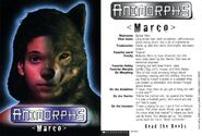 Marco MM1 trading card front and back