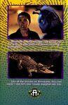14 meet stars animorphs cassie andalite croc