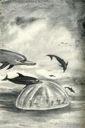 Animorphs as dolphins find andalite dome ship the message japanese illustration