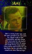Vhs limited edition poster jake bio shawn ashmore