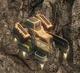 Cargo lifter