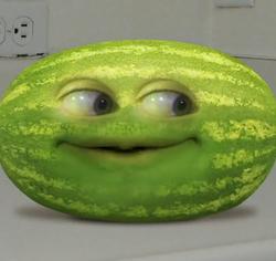 Wator Melon