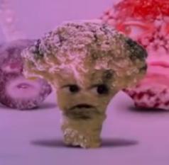 FrozenBroccoli