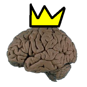 File:KingBwains.png