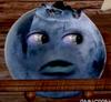Blueberry1