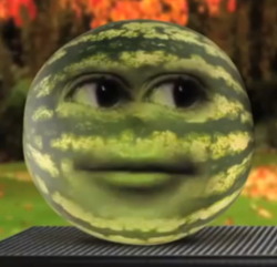 RandomMelon
