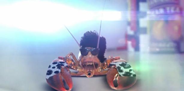File:Rock lobster.JPG