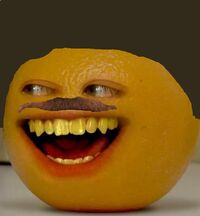 Ao Papa Orange