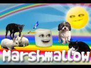 Marshmallow Theme