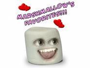 Marshmallow's Favorites