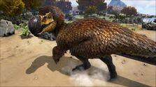 Dodo rex