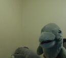 Gray Skinny Dolphin