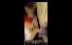 Screen Shot 2016-07-27 at 12.05.20 PM