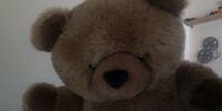 Brown Big Bear