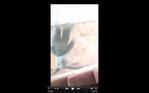 Screen Shot 2016-07-28 at 1.46.20 PM