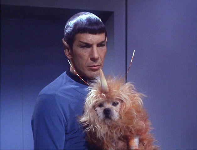 File:Space-Dog-The-Enemy-Within-star-trek.jpg