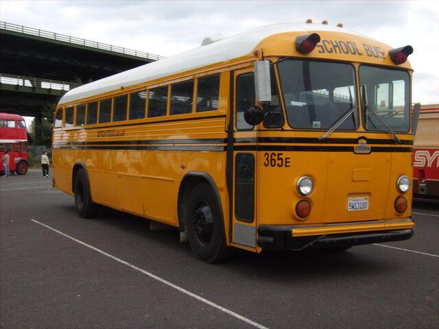 File:School bus.jpg