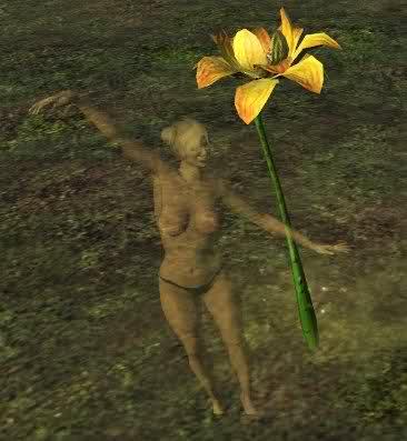 File:Yellow lotus.jpg
