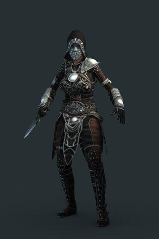 File:Assassin pvpgear.jpg