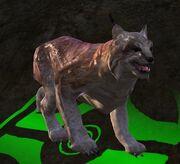Vile lynx