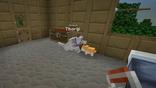 Minecraft Diaries Season 1 Episode 9 Screenshot5