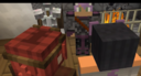 Nicole and Aphmau meeting with the leader of the refugees