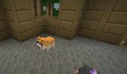 Minecraft Diaries Season 1 Episode 10 Screenshot