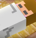 Aphmau Minecraft Diaries Screenshot Of Baby in episode Her Name (64)