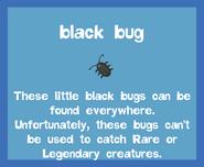 Bait2 Black Bug