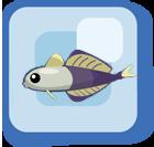 File:Fish Scissortail Dartfish.png