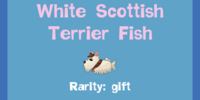White Scottish Terrier Fish