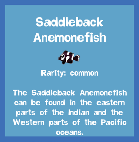 File:Fish2 Saddleback Anemonefish.png