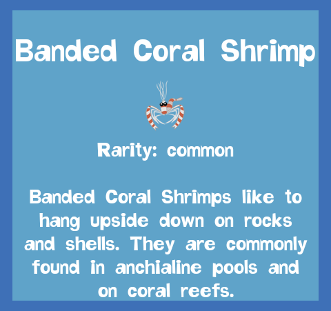 File:Fish2 Banded Coral Shrimp.png