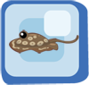 File:Fish Round Stingray.png