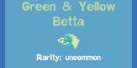 Green & Yellow Betta