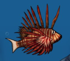 Fish big enemy lionfish