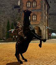 Mirage horse mount